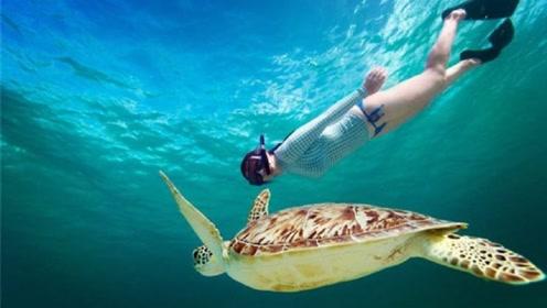 """泰国神奇的""""水下天堂"""",每年只开放7个月,游客们的潜水圣地"""