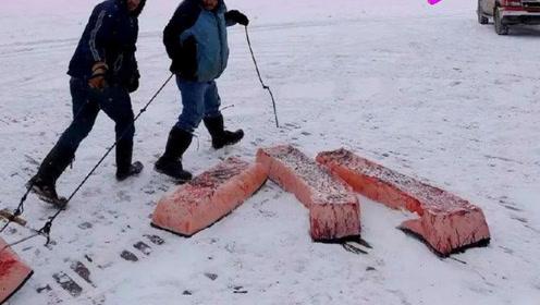 极寒之地,生活在零下60度的雅库特人,他们主要依靠什么食物?