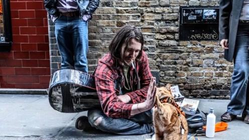 男子好心收养流浪猫,却因此改变了人生,请善待身边的动物