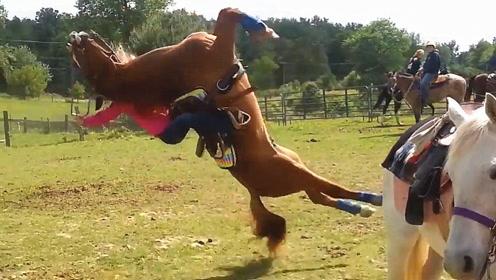 女子刚骑上马,马儿发难,突然来了一个后空翻,场面惊险!