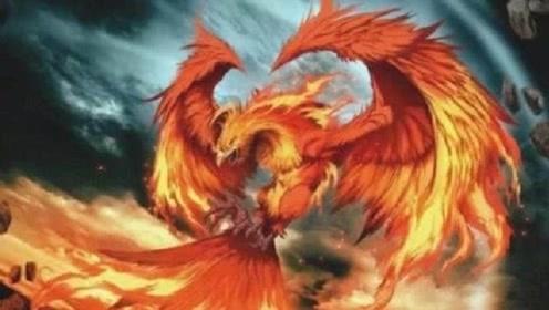斗罗大陆:最强悍的兽武魂排名,七怪中有2种,没想到竟然会有她