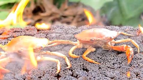 奇葩老外用火柴烤螃蟹,做法真是太直接,结果让人不敢下口!