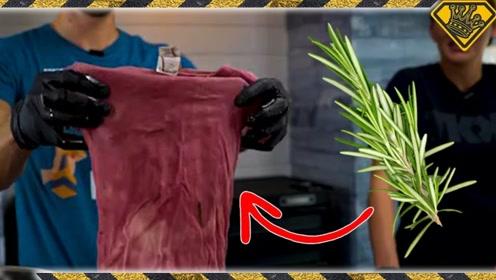 老外用植物来给衣物染色,最后结果怎样?网友:可以自己搞设计了