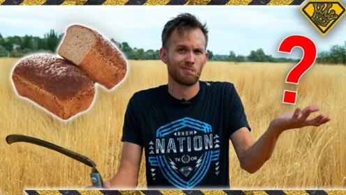 """老外把路边""""野草""""做成面包粉,别提有多美味,好奇""""野草""""是什么?"""
