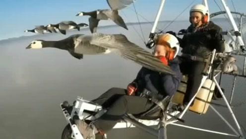 集体极限跳伞,这场景比吃鸡还刺激