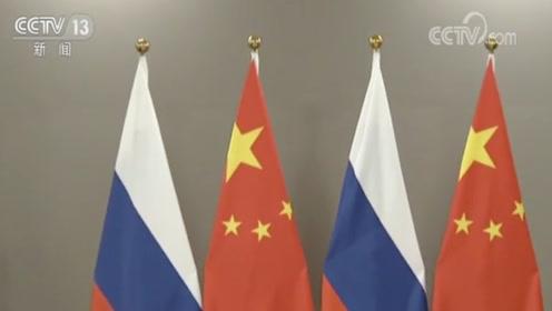 国家主席习近平在巴西利亚会见俄罗斯总统普京
