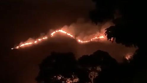 """香港元朗公庵山发生山火 200米""""火龙""""燃烧9小时未熄"""