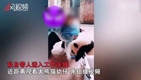 员工带幼童摸熊猫幼崽 当事动物园回应