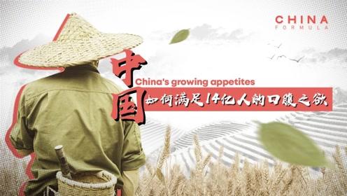 如何满足14亿人的口腹之欲?中国航拍画面放大后太惊人