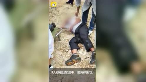 痛心!9人惊动黄蜂遭围攻导致3死5伤,巨型蜂窝现场被摘除