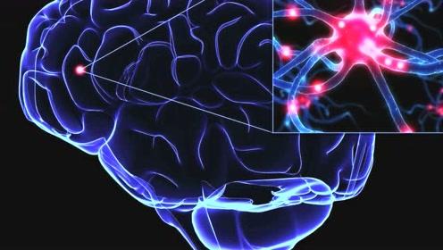 传说人的大脑只开发了10%,如果开发100%后,会有什么后果呢