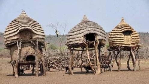 实拍非洲部落村长儿子家,当镜头一拍到内部,网友:难以置信!