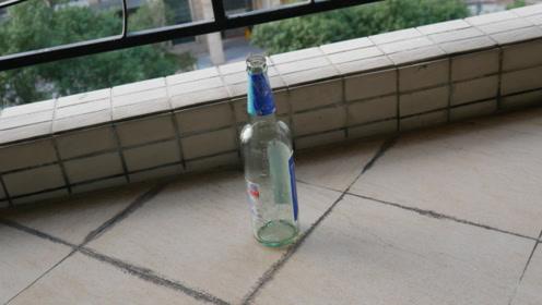 阳台上放一个啤酒瓶,解决了很多家庭主妇的大烦恼,作用太厉害了