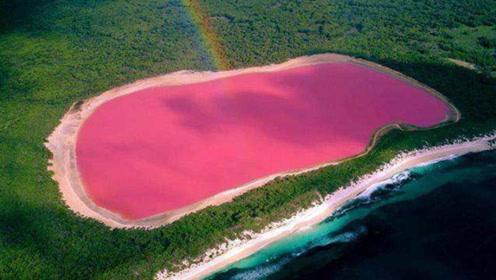 世界上最神奇的死海,湖水整体呈粉红色,看完少女心爆棚!