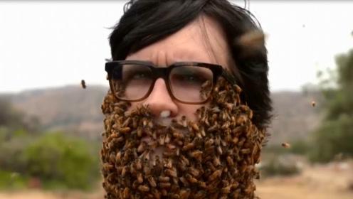 老外挑战10000只蜜蜂当胡子,效果究竟如何呢?网友:看着都很可怕