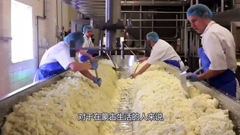 莫扎里奶酪制作全过程,操作非常的繁琐,而且基本都是纯手工打造