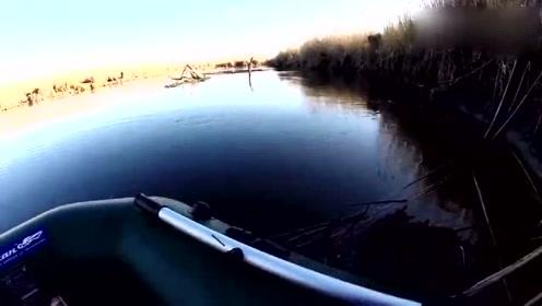 好不容易鱼标浮动,没想到鱼儿挣扎得这么激烈!