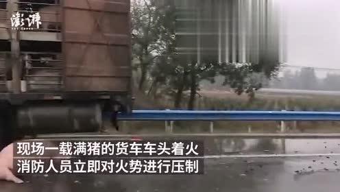 载满生猪的货车起火,5头死亡其余获救