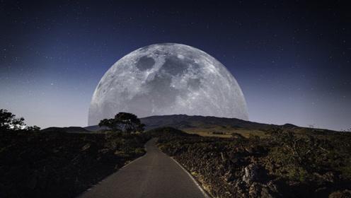 月球变大10倍会怎样?变得更大更好看,但会造成生物灭亡!