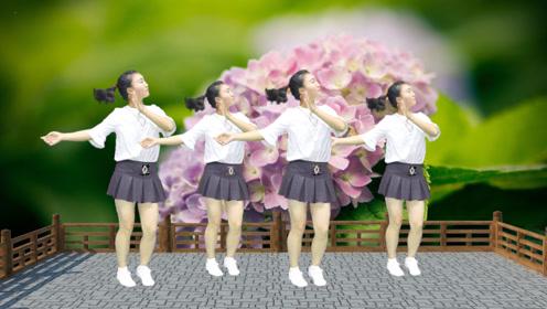 精选DJ广场舞《拉萨夜雨》,美女舞姿新颖靓丽,气质优雅迷人