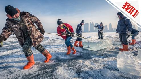 直播回看:哈尔滨采冰节在松花江上启动 冰把头演绎百年采冰传统