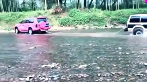 粉色越野车人美心善,当场救援山猫,操作太暖了!