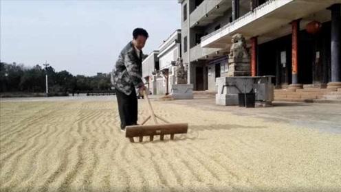 南昌退休市长回村打造景区:好苦好累好气,但问心无愧