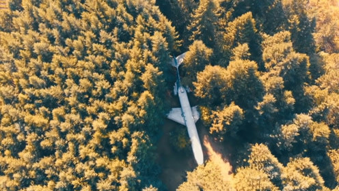 小伙在森林发现一架飞机,以为是失踪飞机,走进一看发现别有洞天