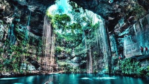 法国探险队在广西东兰发现大型天坑,里面有生物筑巢,引专家重视