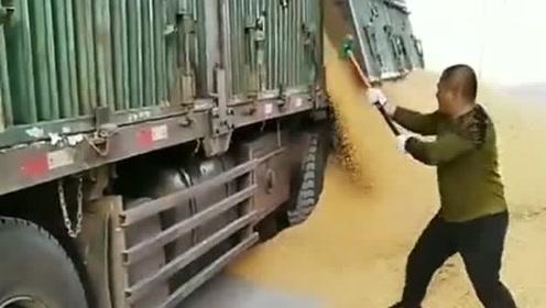 土豪开仓放粮,要是跑慢了一步,差点被埋在下面!