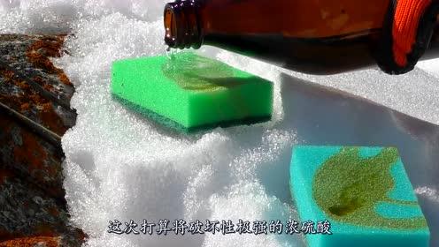 硫酸倒在吸满水的海绵上,海绵能挡住腐蚀吗?结果出乎意料!