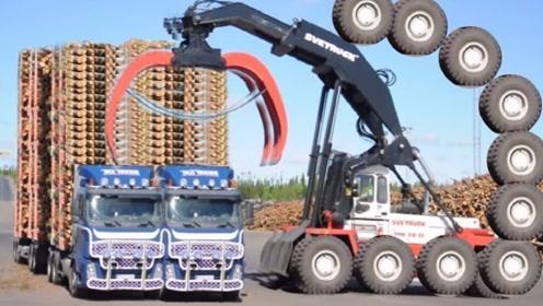 国外伐木机器有多先进?一天几千棵无压力,伐木像切菜!