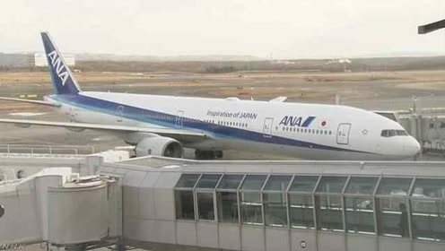 载350人!日本一架波音777冒烟返航,原因正在调查中