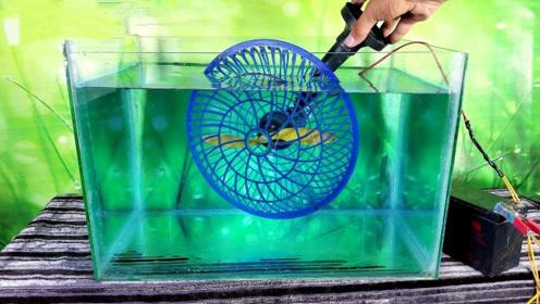 旋转的风扇放水中是啥场面?老外大胆一试,接触水的瞬间眼前一亮