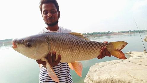 野外水库边折腾半天,终于钓获这条大草鱼,够一家人吃一天了