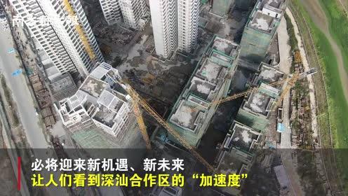 """揭牌一周年,深汕合作区大蜕变,未来又一座""""盐田港""""将拔地而起"""