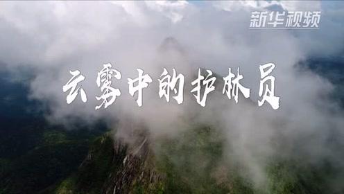 看大美雨林!感受云雾中的巡山路