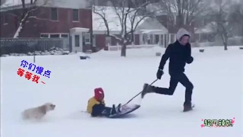 小伙子第一次滑雪,结果帅不过三秒,就悲剧了