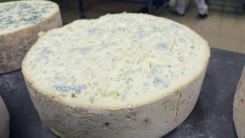 意大利发霉的奶酪,一块竟要100美金,究竟是为何?