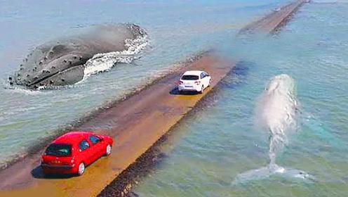 国外最危险的3条公路,汽车在海面上跑,涨潮后路都看不见了