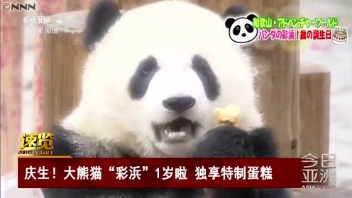 """庆生!大熊猫""""彩浜""""1岁啦 独享特制蛋糕"""