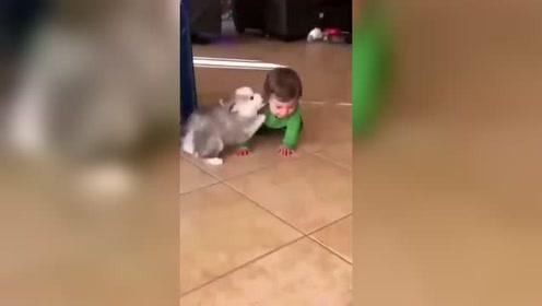 一个宝宝教另一个宝宝 心都要化了