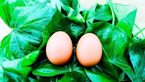 """被称为""""长寿菜""""的红薯叶,加2个鸡蛋竟然这么好吃,上桌就扫光"""