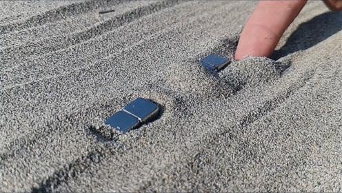 """两块磁铁在沙滩中躺着,竟""""吸引""""到了它?网友:这有点意思!"""