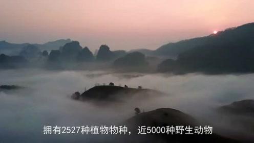 武夷山,中国著名的风景旅游区和避暑胜地,属于丹霞地貌