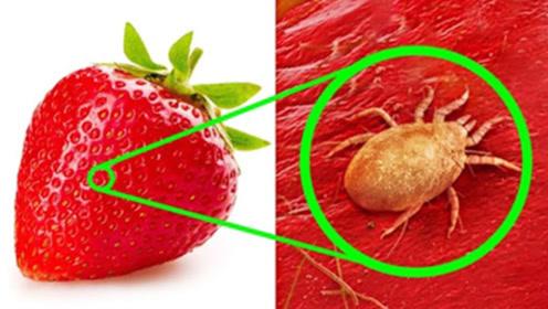 把草莓放显微镜下,放大1000倍会看到什么?看完再也不想吃了