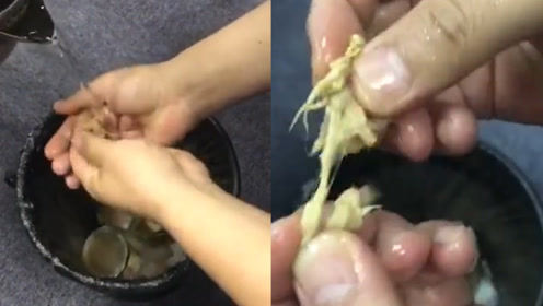 台州一村主任发视频称月饼里的肉松是棉花 警方:造谣,已行拘!