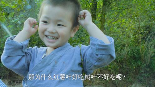 妈妈带两岁儿子摘红薯叶,让他在一边玩,结果一转身妈妈愣住了!
