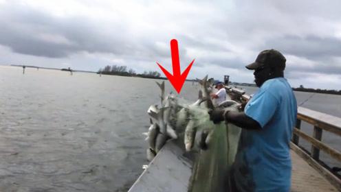 大爷正在旁边钓鱼,小伙跑来二话不说就是一网,没想到收获惊人!