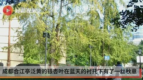 """华西秋雨下线 久违的""""成都蓝""""重返蓉城上空"""